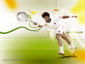 Wallpapers janko tipsarevic